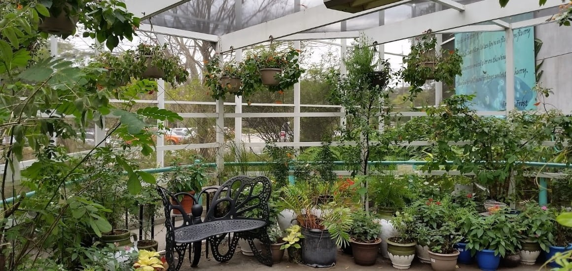 остекление дачных зимних садов
